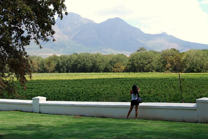 Full-Day South African Wine Tour