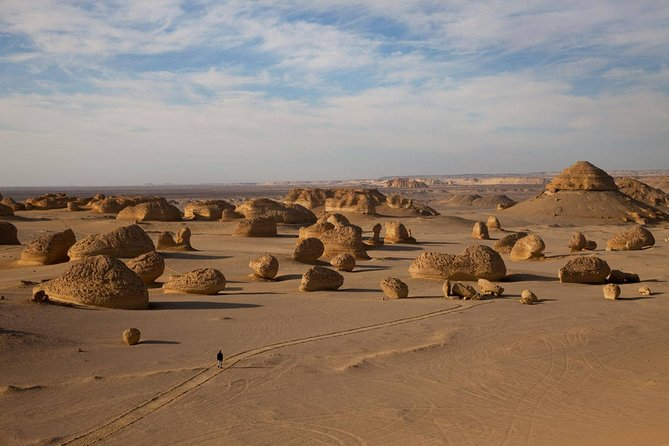 The Valley Of The Whales Two Days Tour From Hurghada With Camping