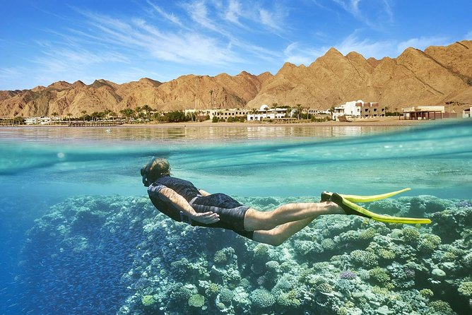 Port Ghalib day snorkeling excursion