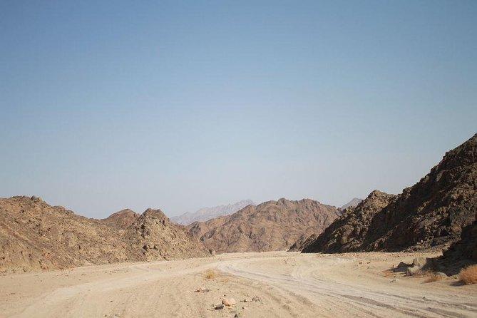 From Marsa Alam: All-in-One Super Desert Safari