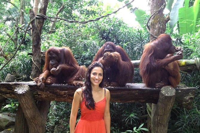 Singapore Zoo with Transfer and Optional Breakfast with Orangutans