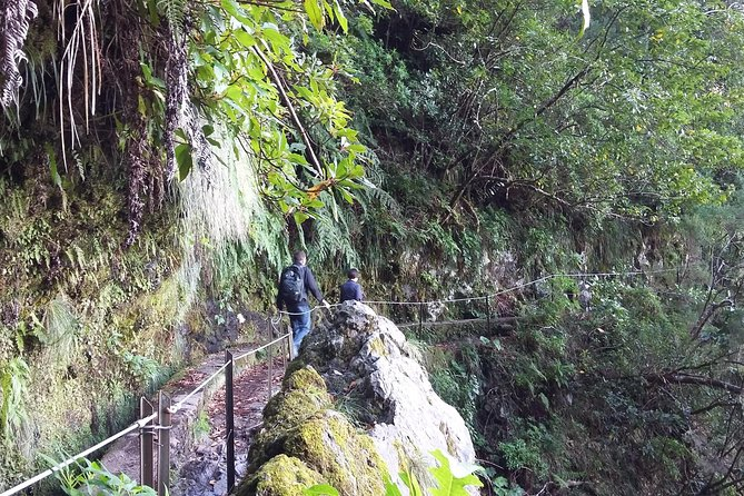 Levada do Rei - Madre of Life small Group Guided Walk photo 6