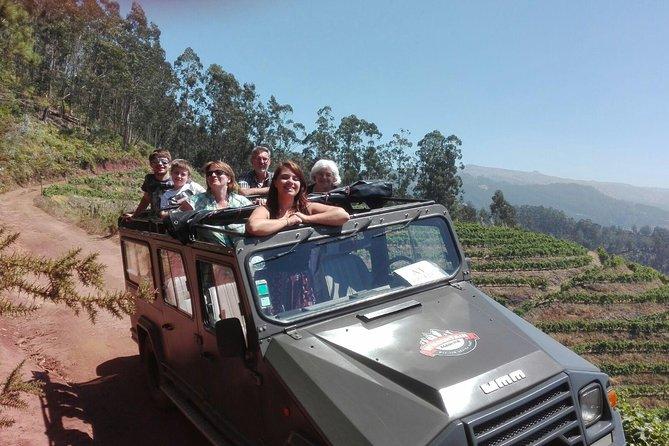 Poncha, Montanhas e Vinhas Safari de meio dia 4x4 para grupos pequenos Cabo Girão
