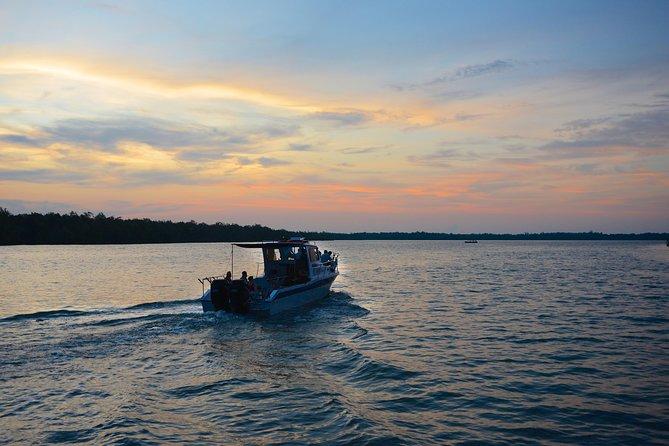 Mangrove & Irrawaddy Dolphin Watching Cruise from Kuching
