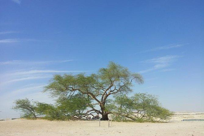 Une visite privée d'une demi-journée - délices du désert de Manama