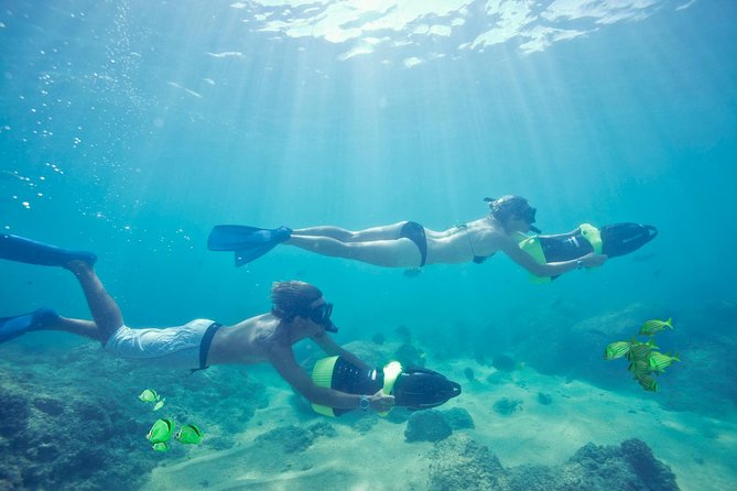 Los Cabos Sea Adventure: Snorkeling, Kayaking and Stand-Up Paddleboarding