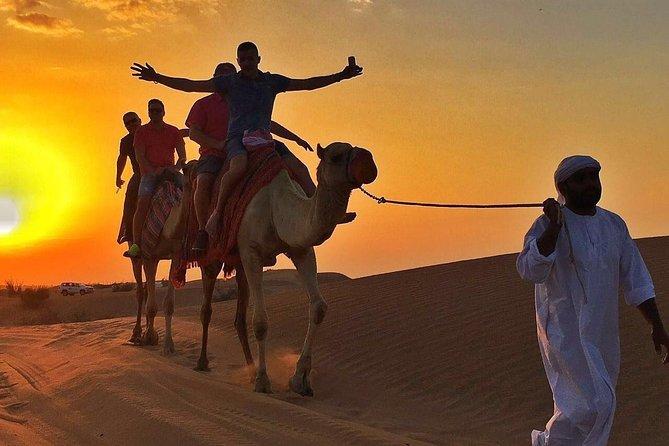 Morning Desert Safari:Dune Bashing Experience with Camel Ride