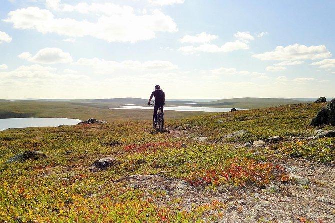 Half-Day Mountain Bike Tour in the Wilderness of Utsjoki