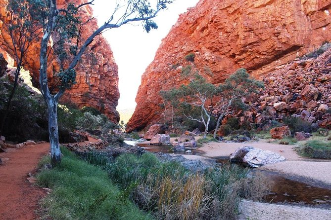 Half Day MacDonnell Ranges Small Group - Private Guided Tour