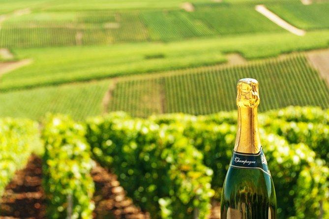 Champagne-reis vanuit Parijs met proeverij in de beroemde kelder van Nicolas Feuillatte