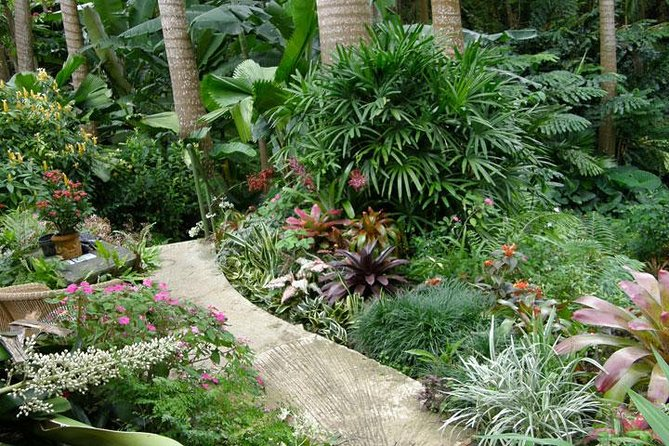 Taste of Barbados Full-Day Sightseeing tour
