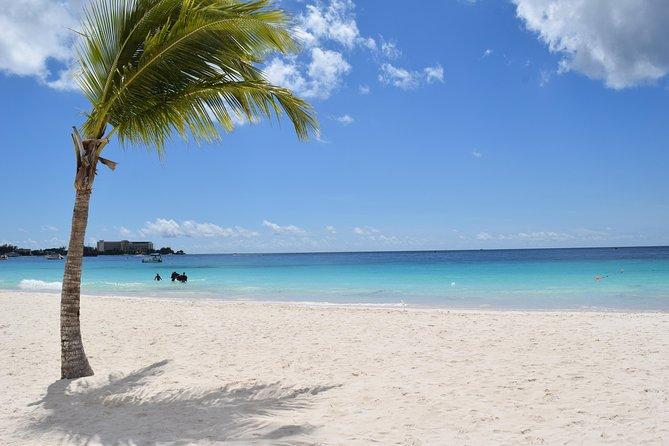 Barbados Beach Day Shore Excursion