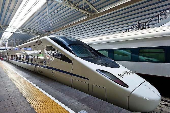 Private Xi'an Bullet Train Station Arrival Transfer to Xi'an City Hotel