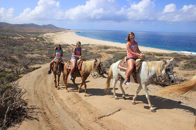 Beach Horseback Riding Tour for Beginners in Cabo San Lucas