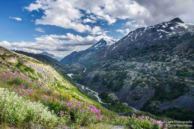 White Pass Summit and Yukon Suspension Bridge Tour