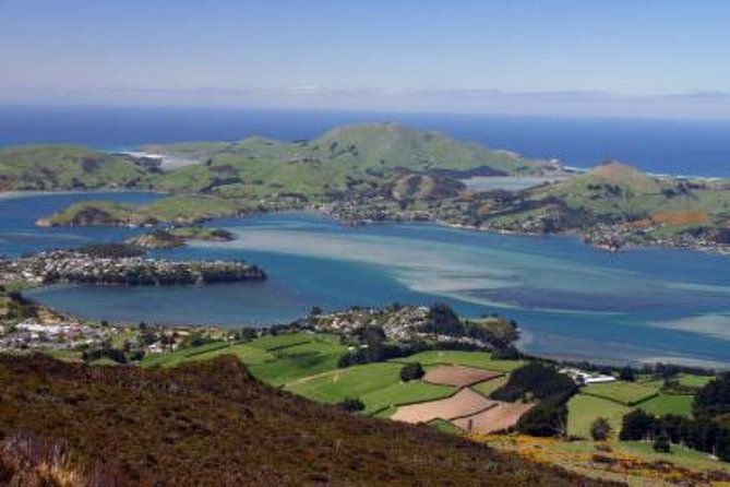 Departure Transfer: Dunedin Central City Centre Hotels to Dunedin Airport