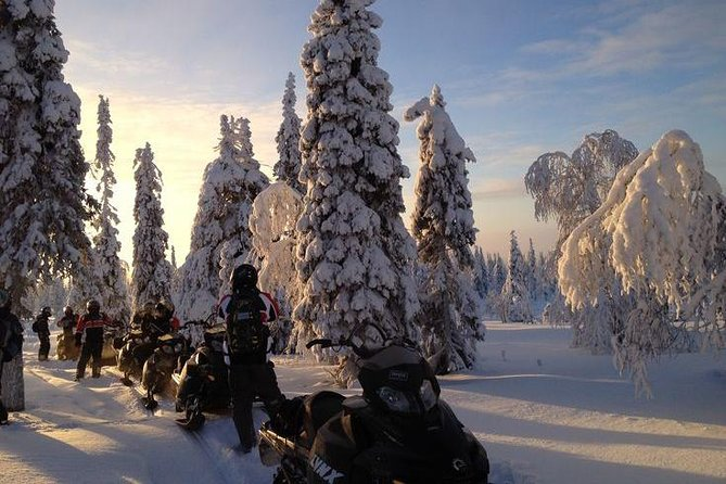 Arctic Snowmobile Tour to the Wilderness Lodge photo 1
