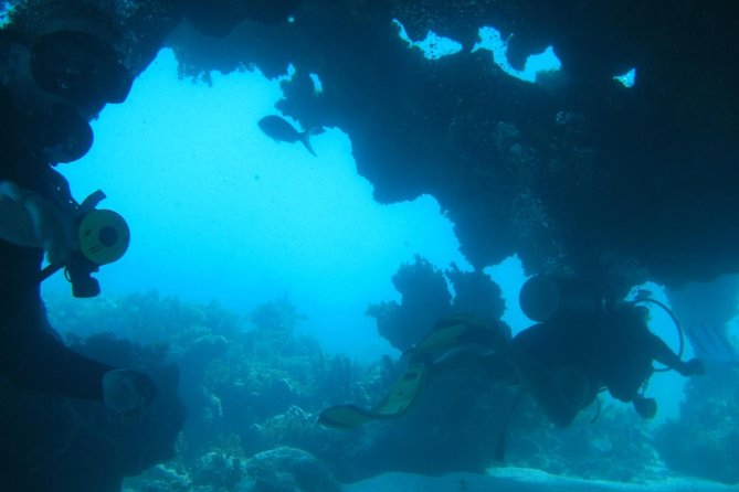 4 Tanks (2 pax) Certified Diving in Puerto Plata