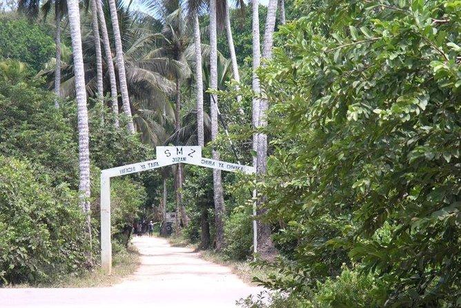 Jozani Forest Reserve Half-Day Guided Tour from Zanzibar