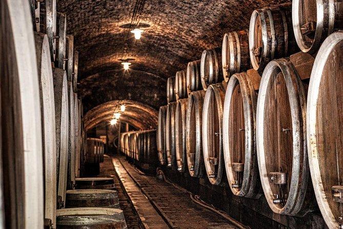 Ilok Wine and Gastro Tour di Zagabria