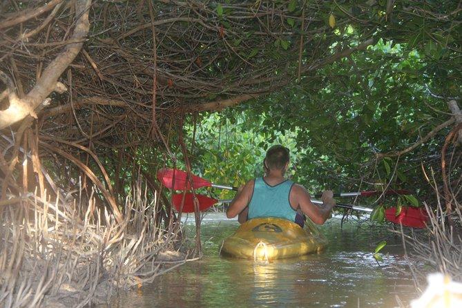 Atardecer en kayak en la laguna de manglares de Mérida.