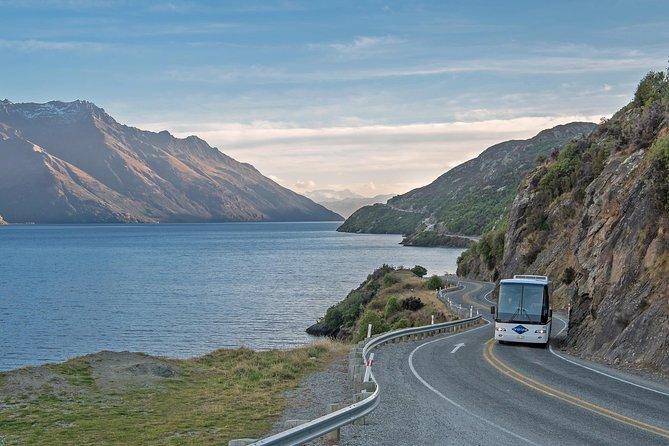 Milford Sound Day Trip från Queenstown med buss, kryssning och flyg