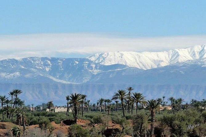 Marrakech Dune Buggy eller Quad Bike Tour med Guide