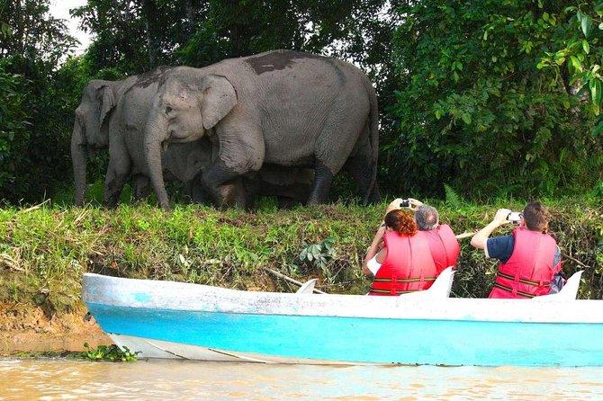klias river safari