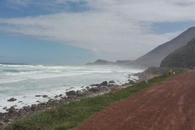 Cape Peninsula Full Day Tour to Cape Point