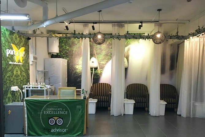 An Extraordinary Nature Spa in Hillview, Bukit Timah Road