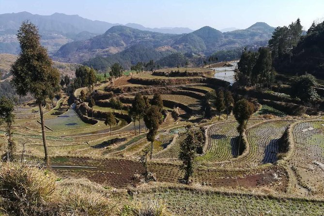 3 Days Rice Terrace and Mudflat Trip from Shanghai by high-speed train