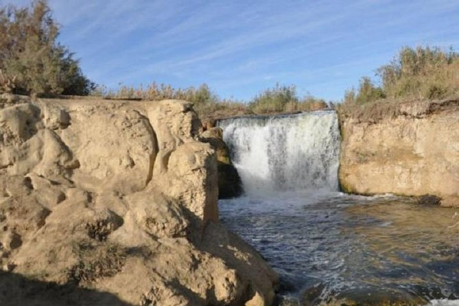 Day Tour to El Fayoum Oasis including Valley of the Whales