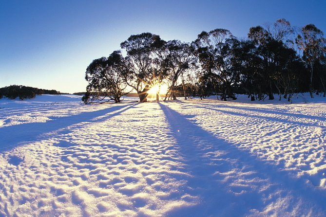 Private Lake Mountain Snow Tour from Melbourne