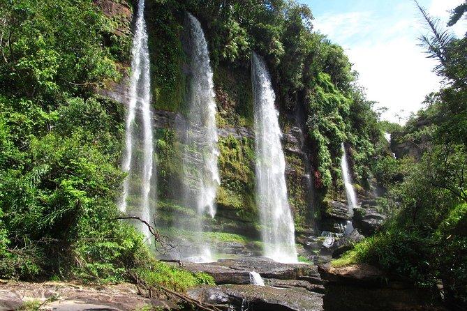 4-dages jungle tur til Amazonas fra Bogota