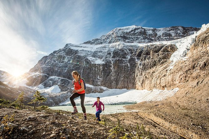 Lake Louise to Jasper One-Way Tour