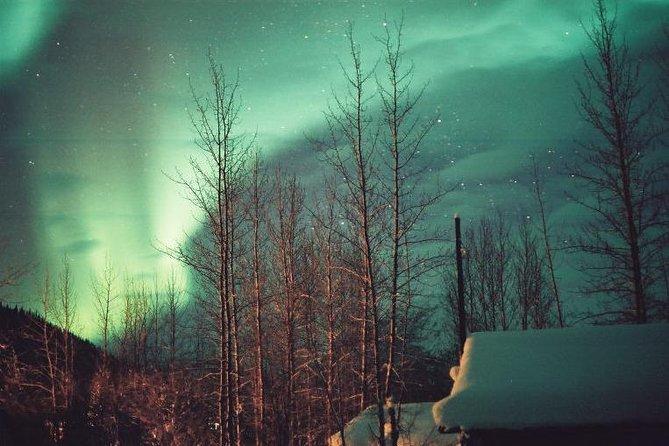 Aurora Borealis Viewing Tour To Mountain uit Fairbanks