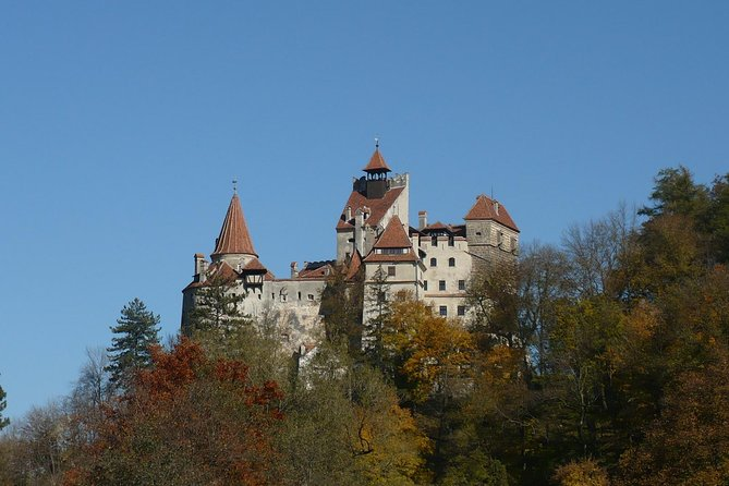 Fortified Churches - Bran Castle - Rasnov Fortress Tour from Brasov photo 1