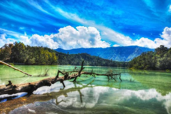 Private Day Trip: Java Highlander Tour from Semarang