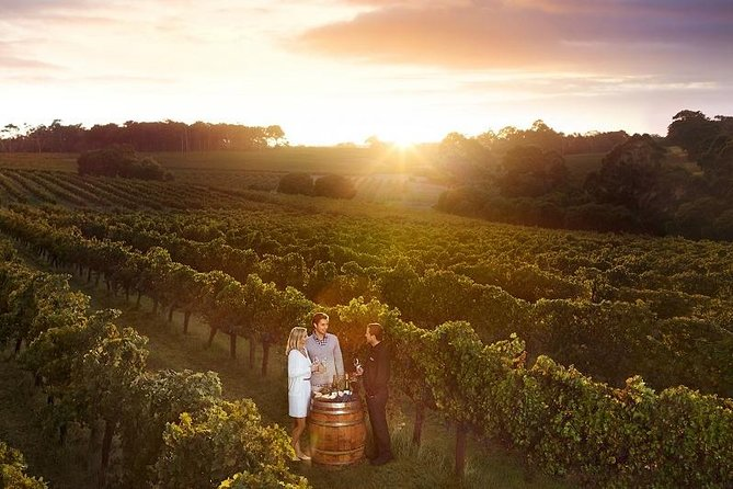 Leeuwin Estate Ultimate Wine & Food Experience