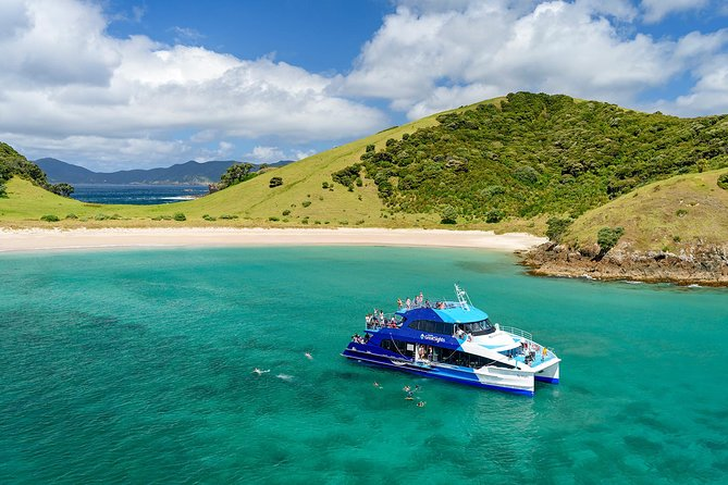 Bay of Islands Day Cruise:The Cream Trip