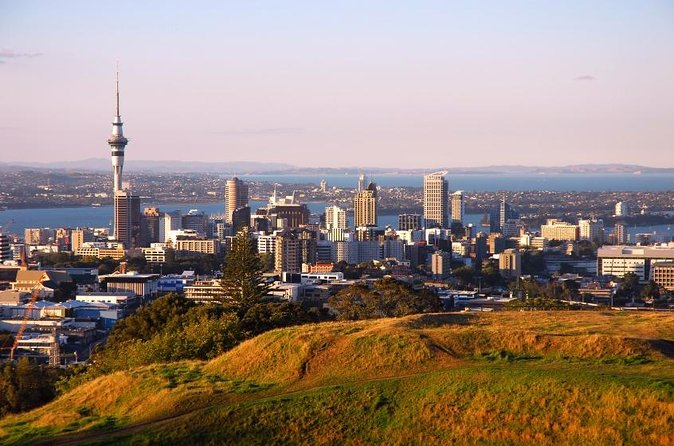 Auckland Discovery City Sights Half-Day Tour