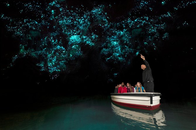 Auckland to Rotorua One Way Tour Including Waitomo Glowworm Caves