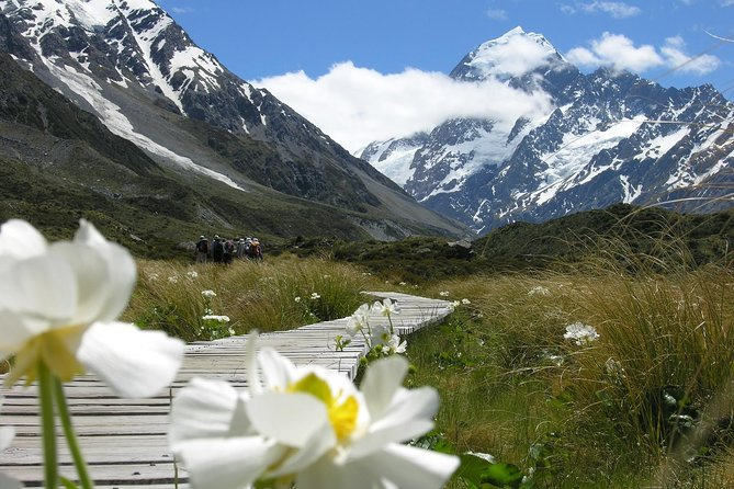 Christchurch to Queenstown via Mount Cook Sightseeing Tour: One-Way