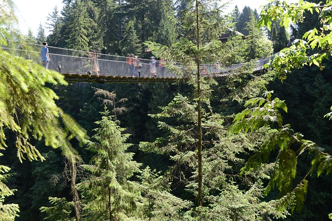 Vancouver Shore Excursion: Pre- Or Post-Cruise North Shore Tour