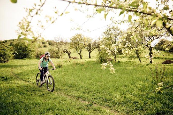 Private Easy Biking Tour of Prague Parks