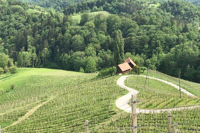 walk&wine tour Slovenia