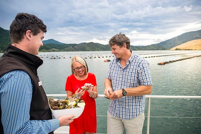 Marlborough Sounds Greenshell Mussel Tasting Cruise from Havelock