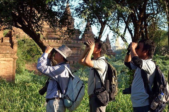 Bagan Temples and Nature Day Trip with Lunch photo 1