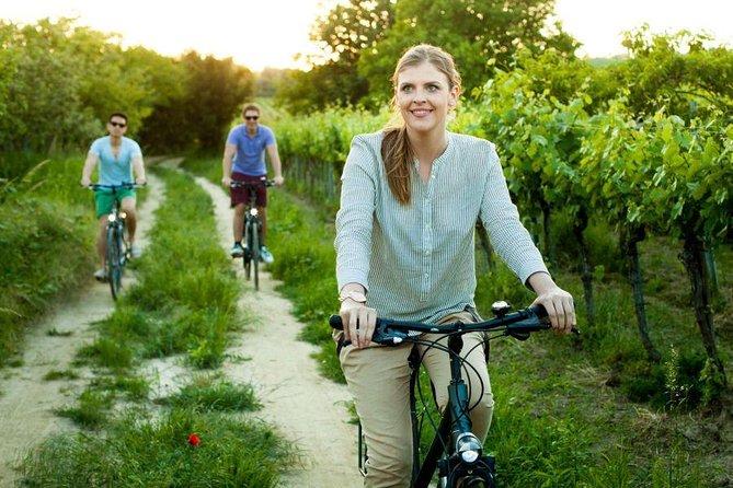 Agua y vino de Viena: un recorrido de placer en bicicleta y a pie