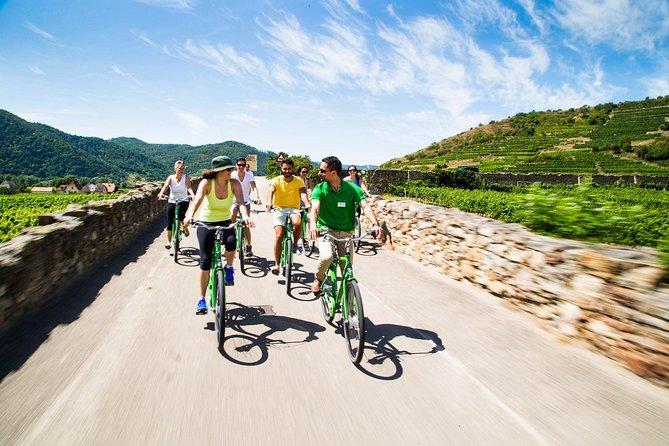 Excursión en bicicleta con catas de vino en el Valle de Wachau desde Viena